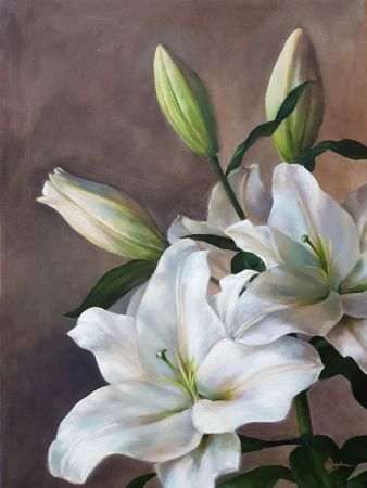 Lauren Salm, Lys Blanc