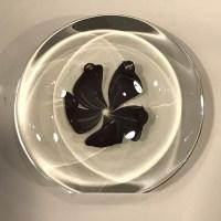 "'Copper, Ruby & White Flower' Blown Glass by Robert Flowers 1.5""W x 5.5""D $200"
