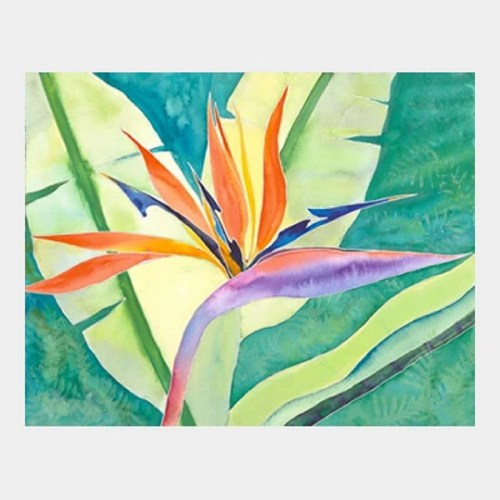 Bird of Paradise watercolor by Jocelyn Cheng, Giclée print, several sizes