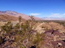 araby-trail-4-sm