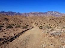 araby-trail-5-sm