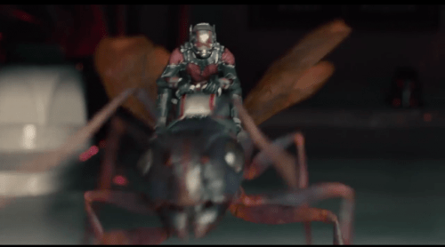 ant-man7