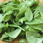ダイエットの強い味方、ホウレンソウに含まれる成分「チラコイド」に注目