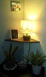 Aquarelle papier noir Echarpe de Vénus mlam noiram marion-lorraine poncet planète plante
