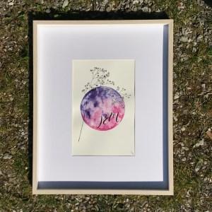 JÊM aquarelle mlam noiram Poncet Gypsophylle planète Erard