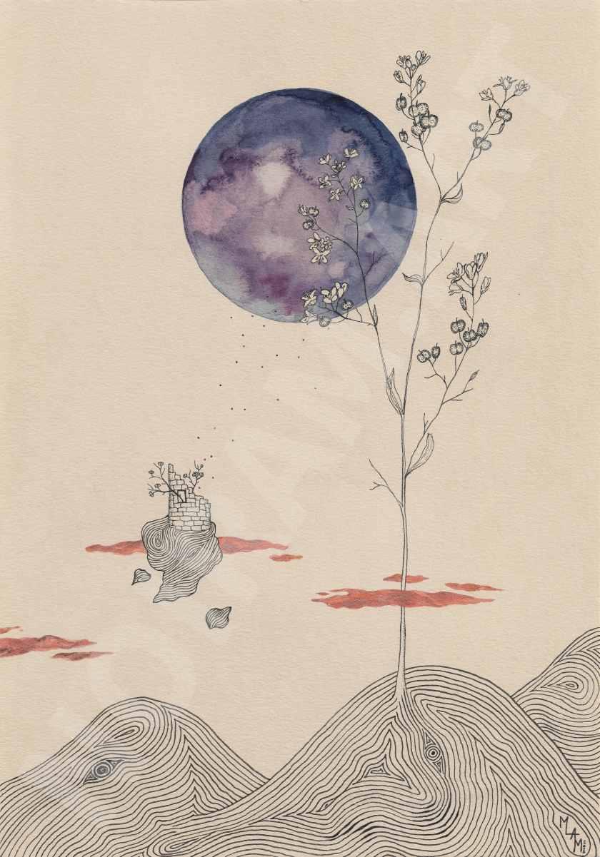 planète champ tour flotte plante rêverie vol nuage marion-lorraine poncet mlam noiram aquarelle