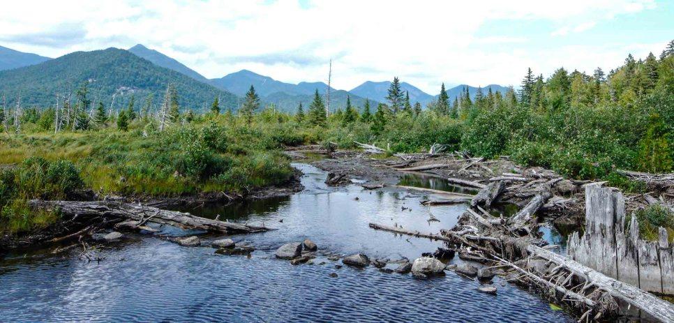 Adirondacks 2015 (67 of 83)