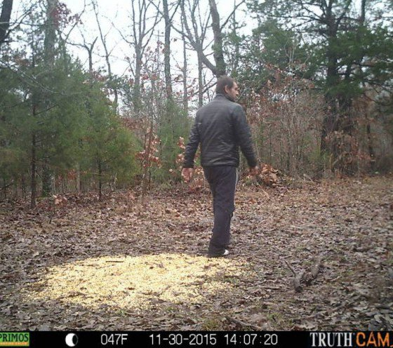 Man spotted in Madison County woods, not far from Mark Twain Forest find