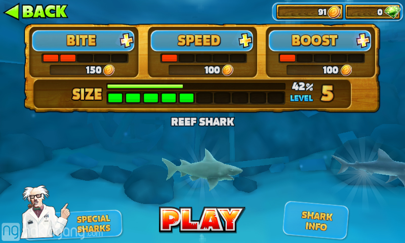 Hungry-Shark-Evolution-screen-1