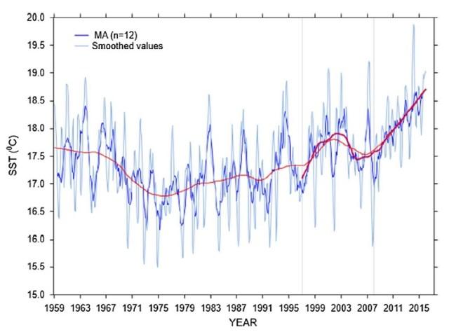 seasonal-decomposition-of-sea-surface-temperature Šolić et al. 2018