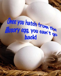 Hating from the Illusory Egg