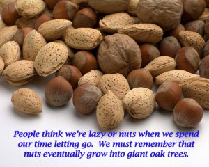 Nuts turn into giant oak trees.