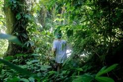 jungle-trekking-kasi