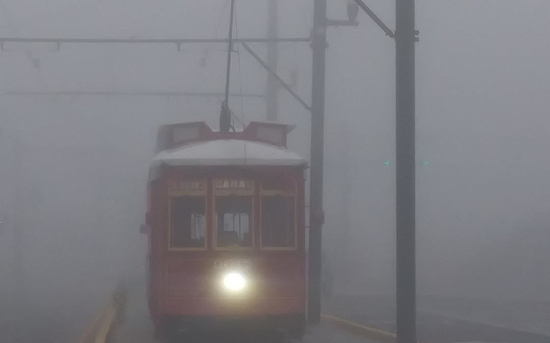 Cemeteries Fog on Canal Street #canalstreetcar