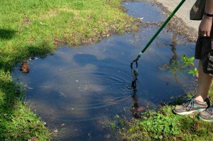 Flash flood before trash mob = trash fishing. Less dangerous than noodling, but way nastier.