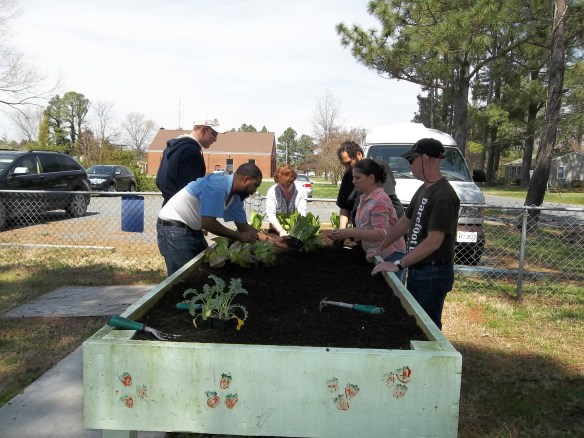 The group planting our spring lettuce!  Yum!!