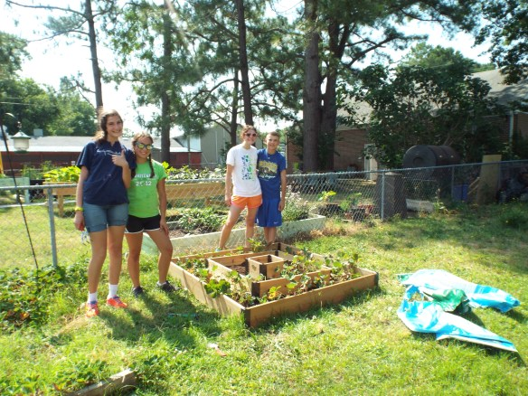 The strawberry bed the Youthworks crew built last year.