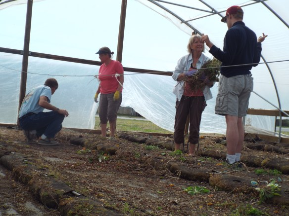 Brandon explaining the benefits of a greenhouse. Yeah Brandon!