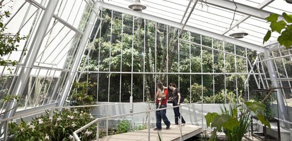 jardim-botanico-porto-2