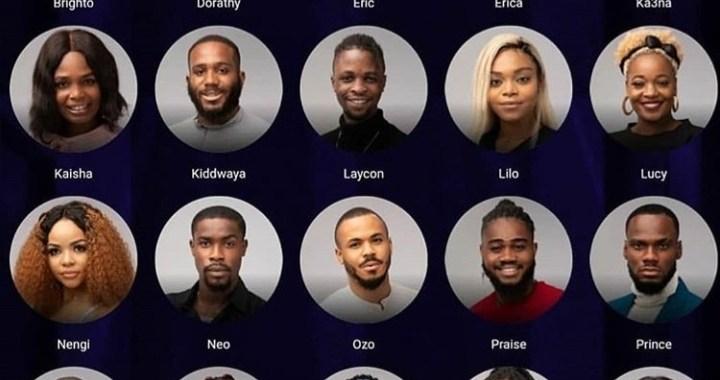 Meet the Big Brother Naija 2020 housemates