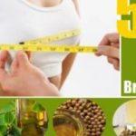 5 Best Oils For Breast Enlargement Massage