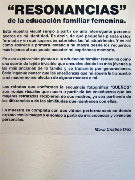 Resonancias - María Cristina Díaz