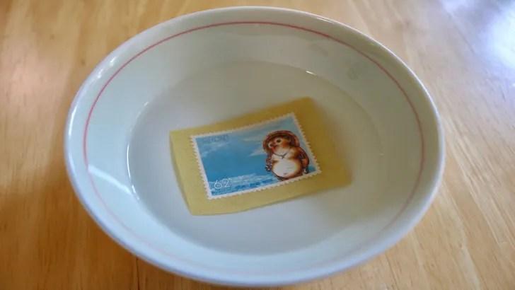 一度貼った切手をお湯で綺麗にはがす方法(62円切手をお湯にしばらく浸した後の状態)