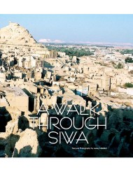 https://nomad4now.com/articles-egypt/siwa-oasis/