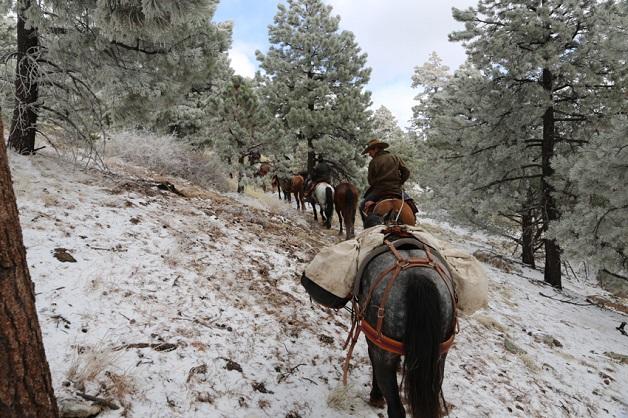 https://i2.wp.com/nomadesdigitais.com/wp-content/uploads/2015/12/cavalos-8.jpg