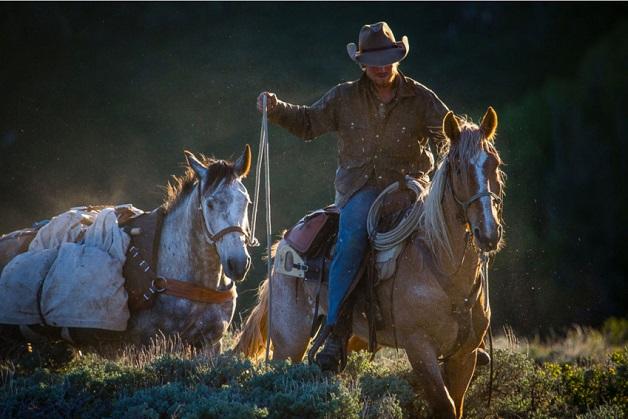 https://i2.wp.com/nomadesdigitais.com/wp-content/uploads/2015/12/cavalos-9.jpg