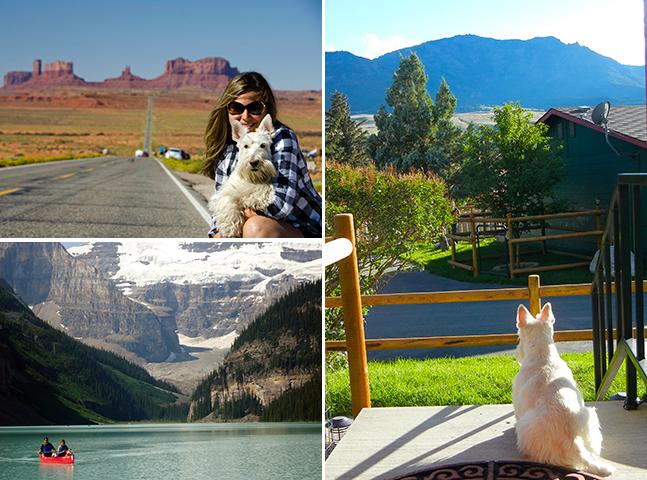 História Nômade: como é viajar com nosso melhor amigo de 4 patas