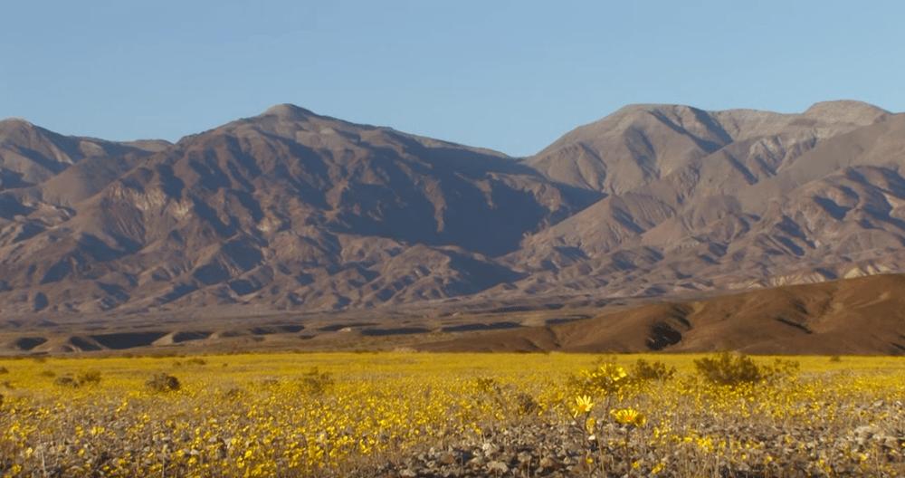 https://i2.wp.com/nomadesdigitais.com/wp-content/uploads/2016/02/deserto2.png
