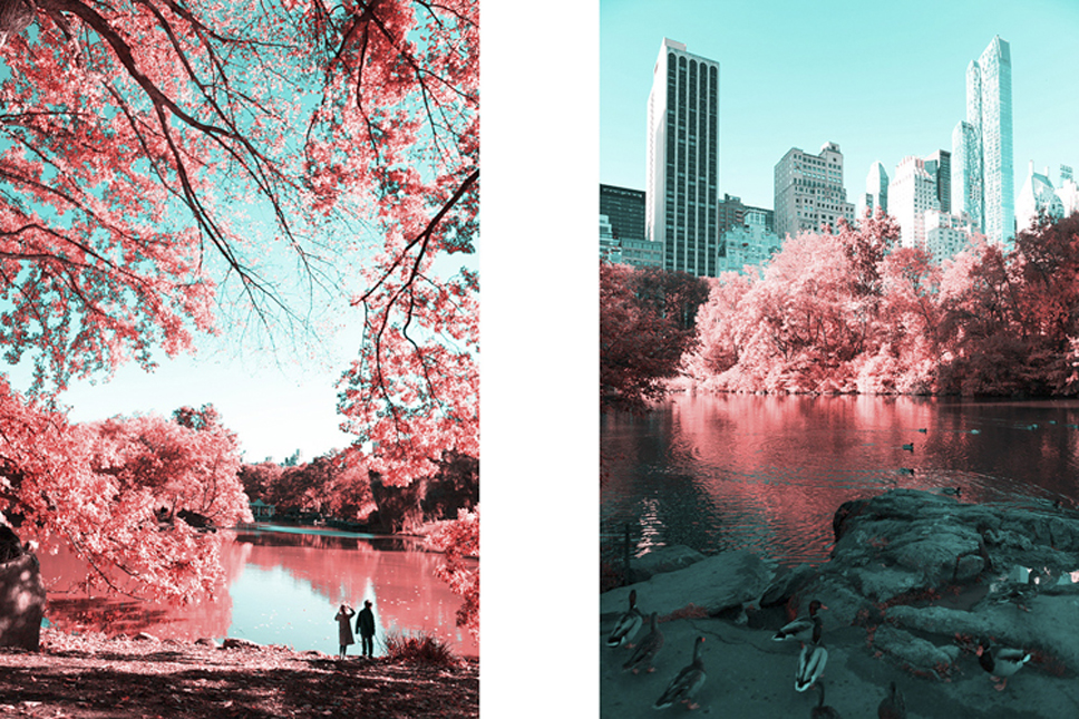 3_Central-Park-Infrared