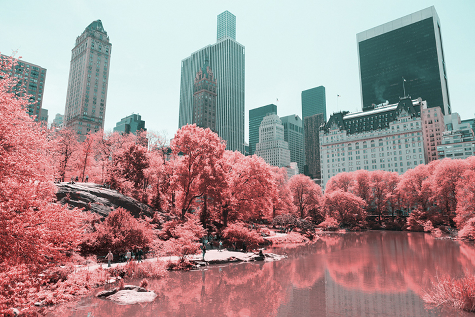 6_Central-Park-Infrared