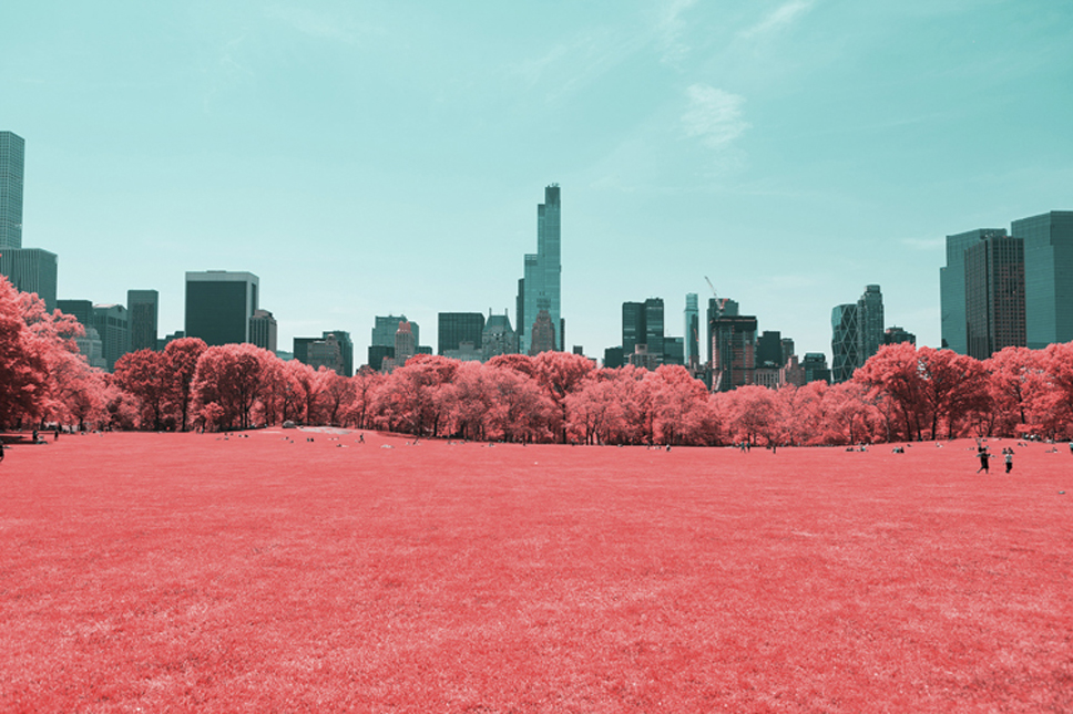 7_Central-Park-Infrared