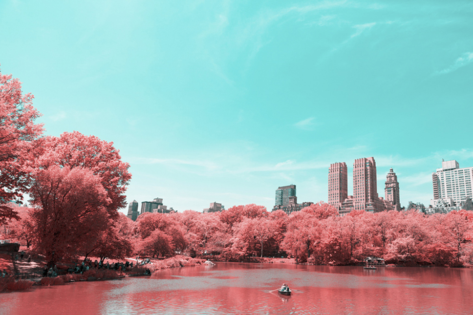 9_Central-Park-Infrared