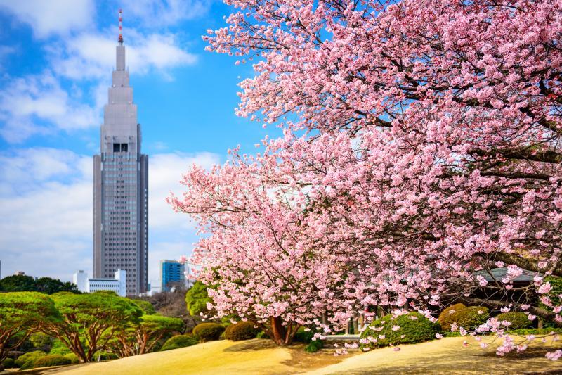 06-toquio