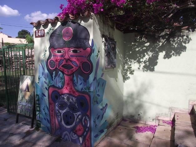artista_chileno-16
