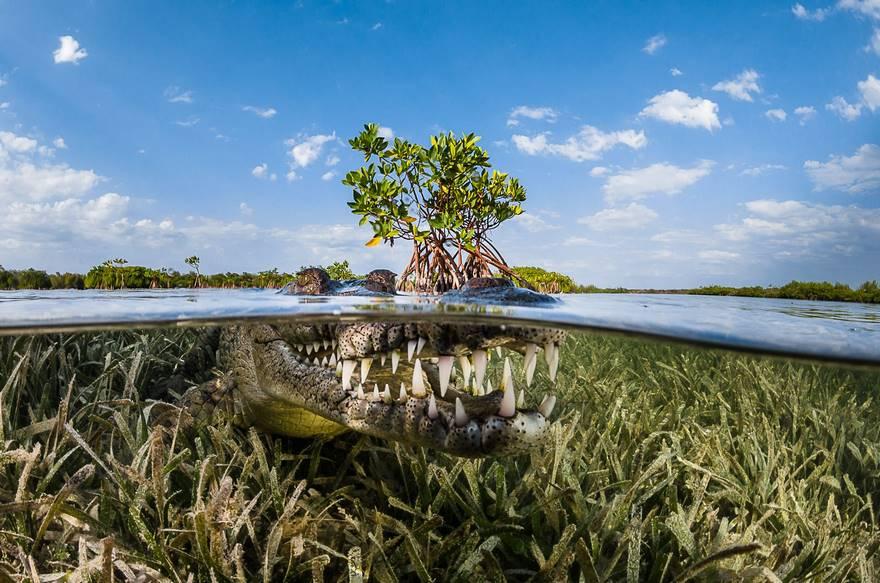 siena-international-photo-awards-travel-winners-2016-53-58173e9983fa1__880