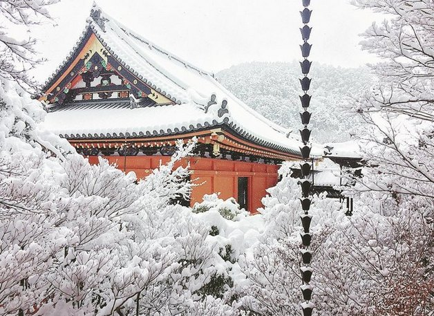 heavy-snowfall-kyoto-japan-2017-23-587dcc66573ac__700