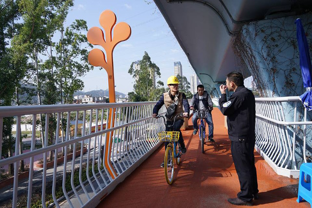 cycling_skyway5