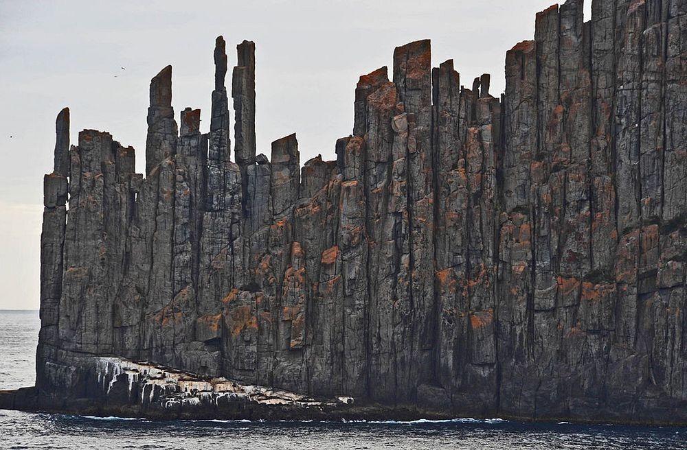 dolerite-column-tasmania-32