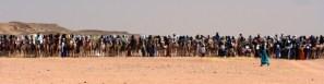 Cure Salee– a nomadic (Tuareg and Wodaabe) celebration