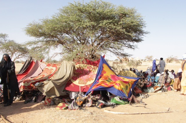 "Arriving guests who do not bring their ""houses"" or herds, set up makeshift blanket shelters under the trees."