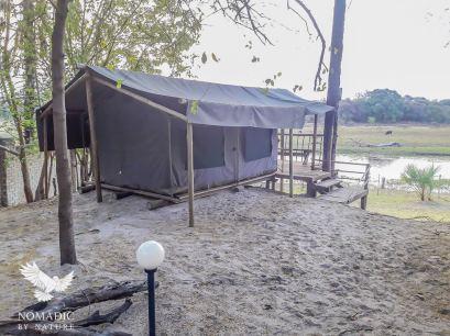 136, Day 241, Okavango River Lodge, Maun, Botswana