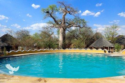 138 Day 243, Planet Baobab, Gweta, Botswana