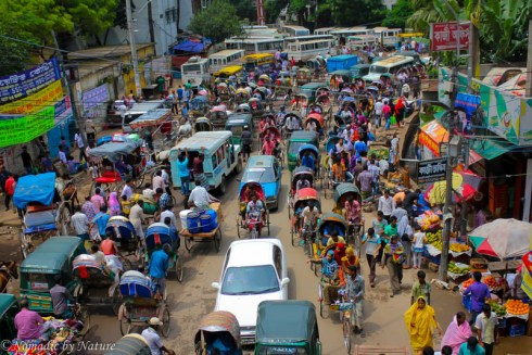 Rickshaw Traffic, Old Dhaka, Bangladesh
