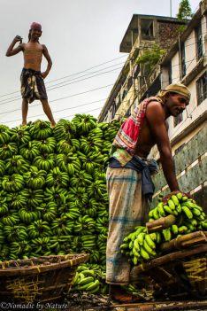 Banana Deliveries in Old Dhaka, Bangladesh