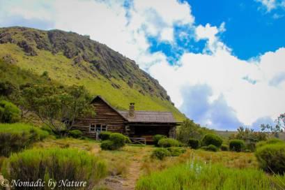 Rutundu Log Cabins, Mount Kenya