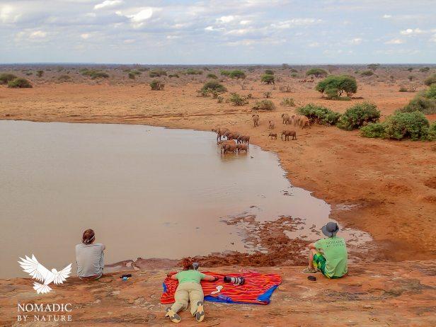 24 Tsavo East National Park, Kenya